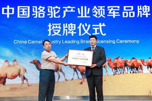 """""""中国骆驼产业领军品牌""""旺源骆驼奶获殊荣"""