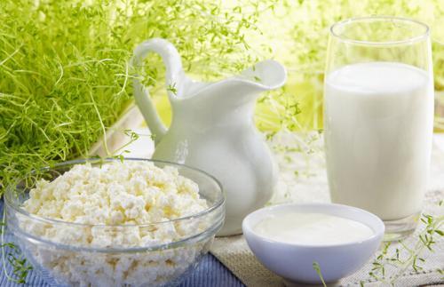 骆驼奶与人体必需的蛋白质