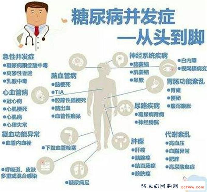百度文献综述:骆驼奶防治糖尿病