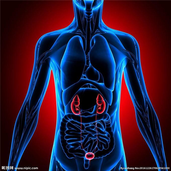 什么是肾脏的排糖阈值?
